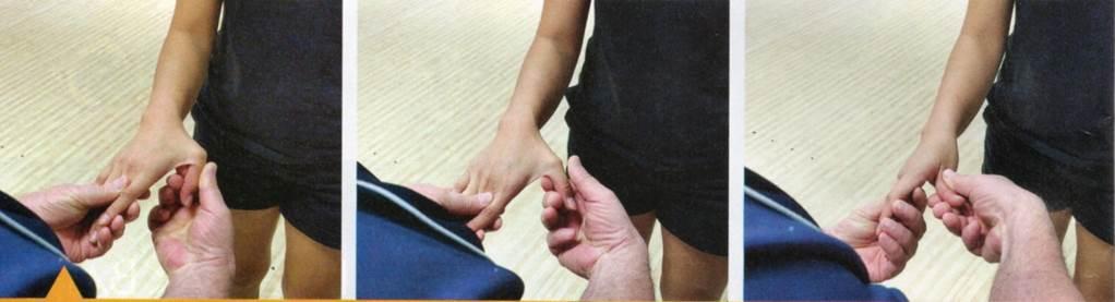 Articulation pouce